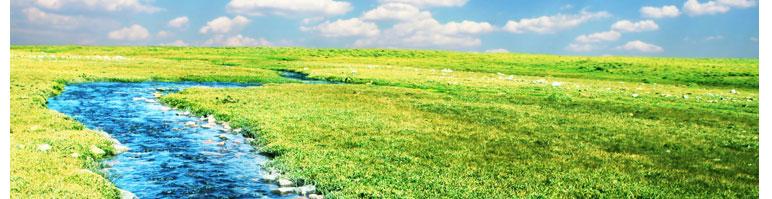 תמונת שביל מים לצדיה דשא
